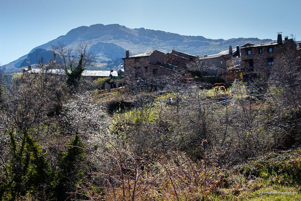 Ruta de la Arquitectura Negra de Guadalajara