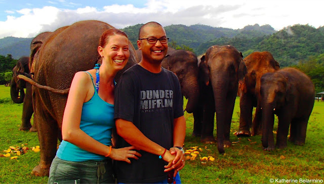 Photo with Elephants
