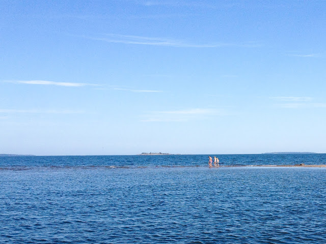 hiekkasärkkä, meri, ihmisiä särkällä