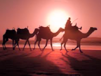 Sa'id bin Zaid - Sahabat Nabi yang dijamin Masuk Surga