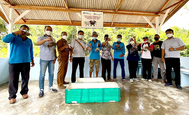 Pokdakan Tuah Ketam Panen Puluhan Kilogram Kepiting Yang Dibudidayakan bersama PT Timah Tbk