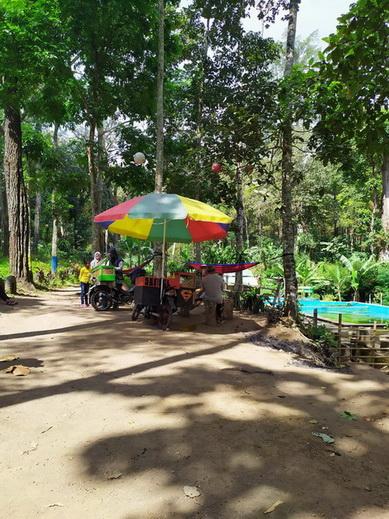 kolam alami biskit jember
