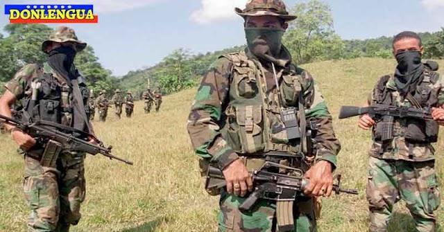 FARC denuncia que las FANB extorsionan a campesinos y trabajadores en Apure