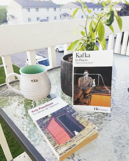 Lectures d'été, Kafka, Paasilinna
