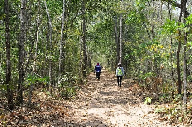 24h to explore the pristine Bung Thi forest in Binh Thuan