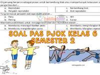 Soal PAS PJOK Kelas 6 SD/MI K13 Semester 2 dan Kunci Jawaban