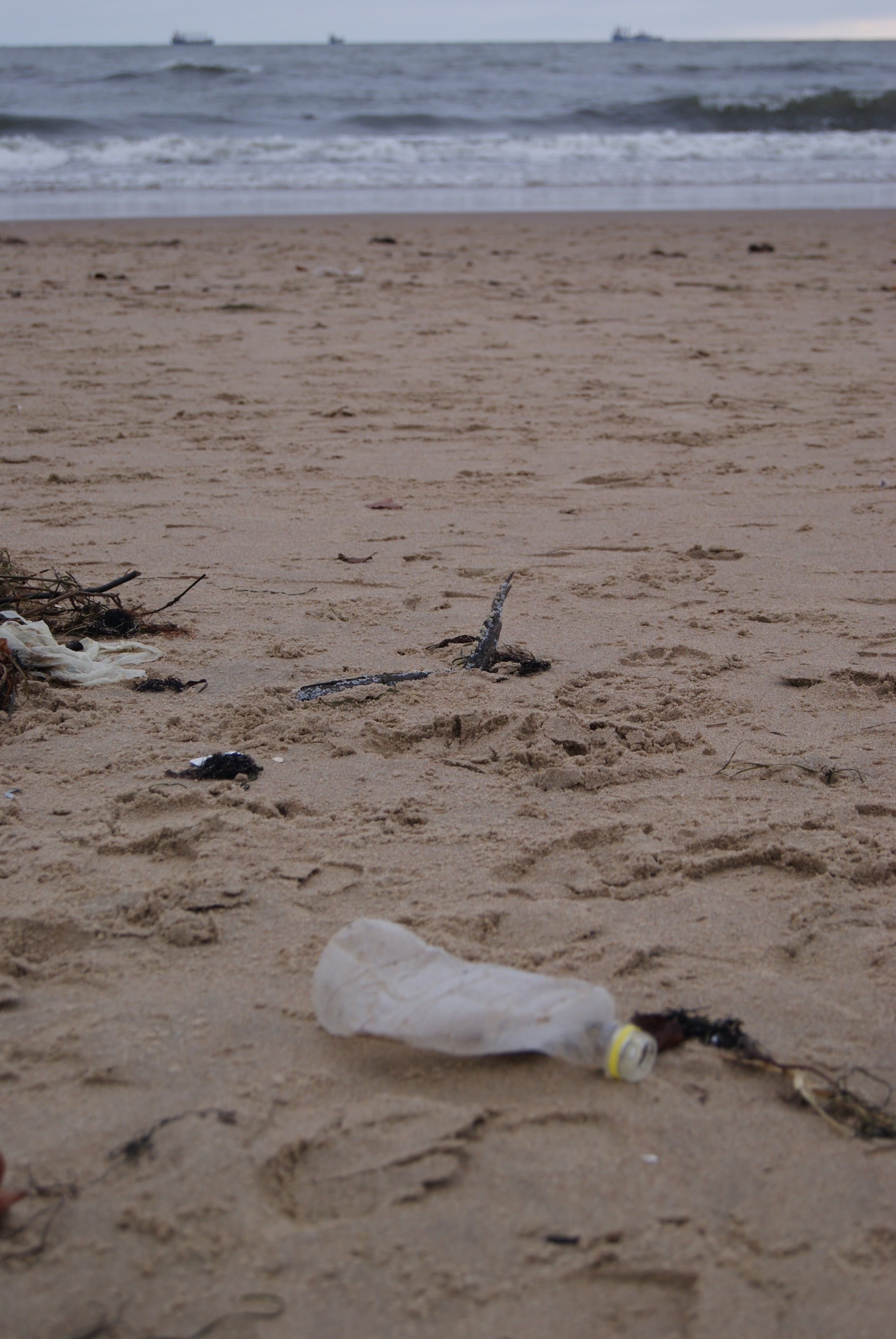 śmieci nad morzem