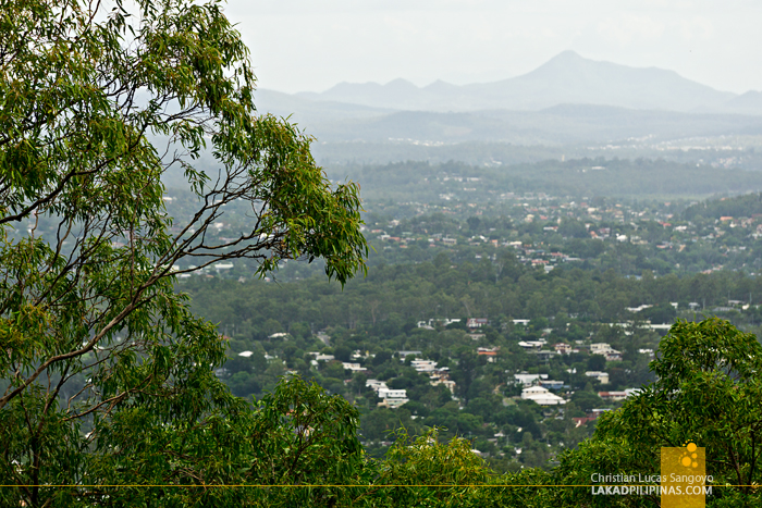Brisbane Day Tour Mount Coot-tha Lookout
