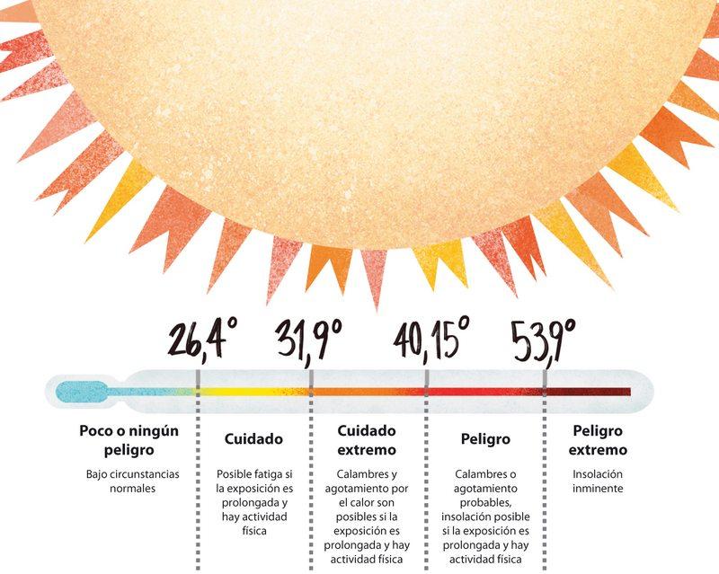 Qué pasa con su cuerpo cuando se enfrenta a más de 36° C de calor