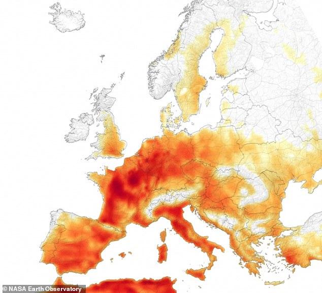 Κλιματική αλλαγή και ο κίνδυνος του θερμικού στρες