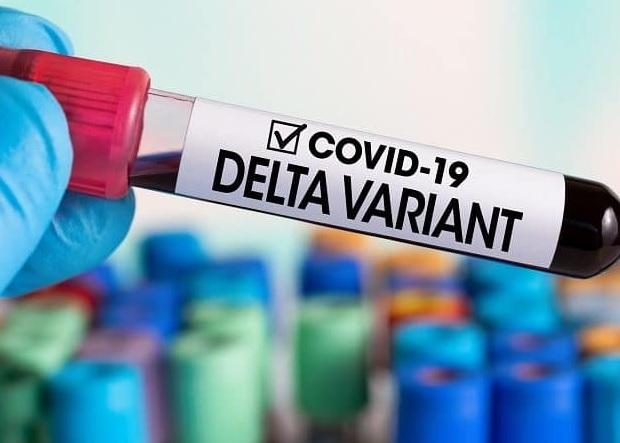 """Variante """"Delta"""", engenharia Genética?"""