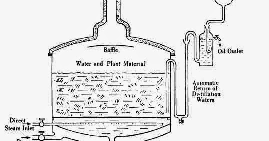Practical Problems Connected with Essential Oil Distillation