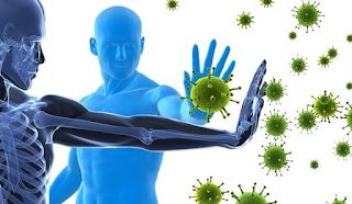 Inilah Alasannya Mengapa Imunitas Mampu Lawan Virus Corona