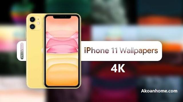 تحميل خلفيات ايفون 11 & ايفون 11 برو & ماكس دقة عالية جدا فور كي  4KQHD