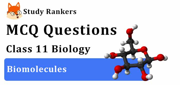 MCQ Questions for Class 11 Biology: Ch 9 Biomolecules