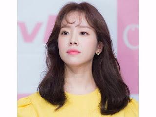 pemain drama Familiar Wife