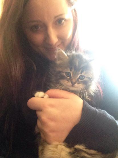 woman holding a tabby kitten