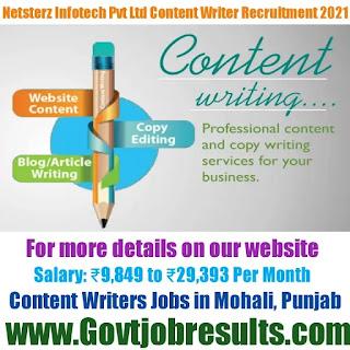 Netsterz Infotech Pvt Ltd Content Writer Recruitment 2021-22