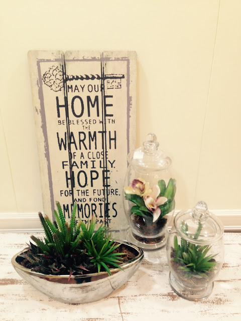 How to decorate succulent plants