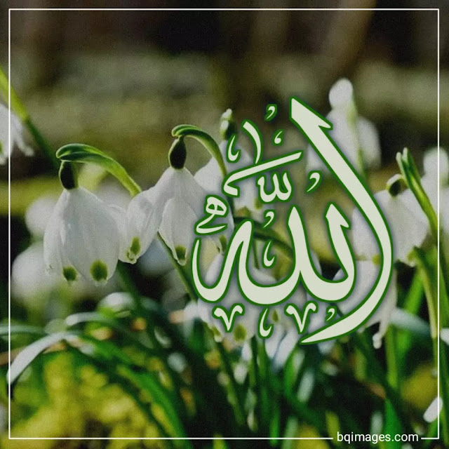 Allah Name with flowers