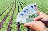 Νέα δεδομένα φέρνει για μικροκαλλιεργητές το ειδικό καθεστώς της νέας ΚΑΠ που απαιτεί ωστόσο επιλέξιμη γη