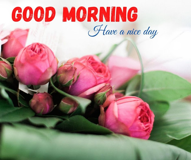 flower image with good morning