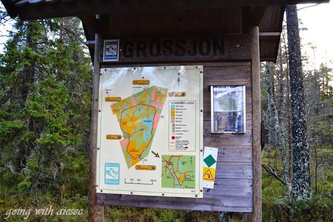 Rezerwat przyrody Grössjöns