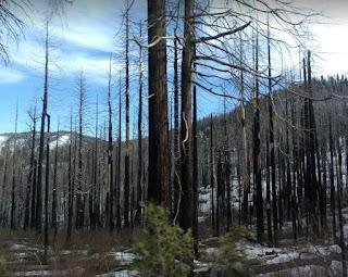 YosemiteOneDayTrip.jpg