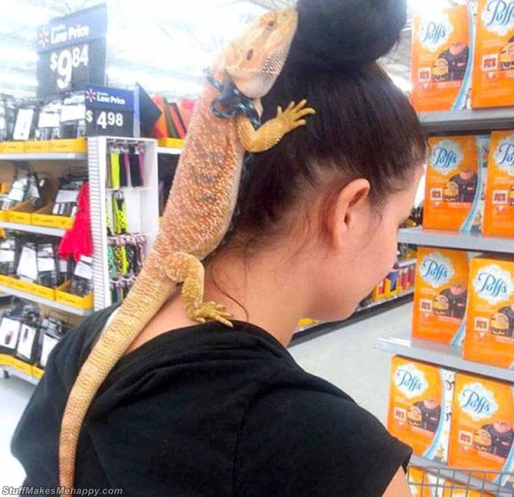 Funniest People of Walmart Pictures of All Time