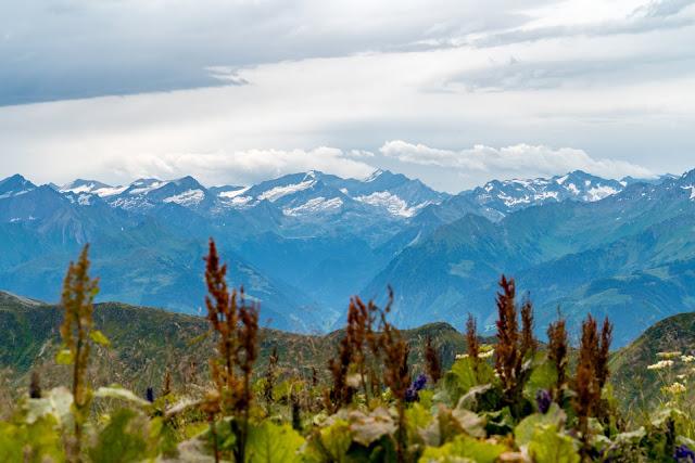 Schusterkogel  Bergwanderung Saalbach  Talschluss Hinterglemm  Wanderung-Saalbach  Wandern-Saalbach SalzburgerLand 08