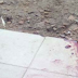 Man butchered by alleged ritualists in Edo state [Graphic photos]