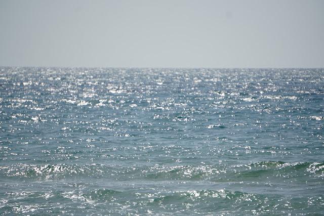 הגלים בסידנא עלי
