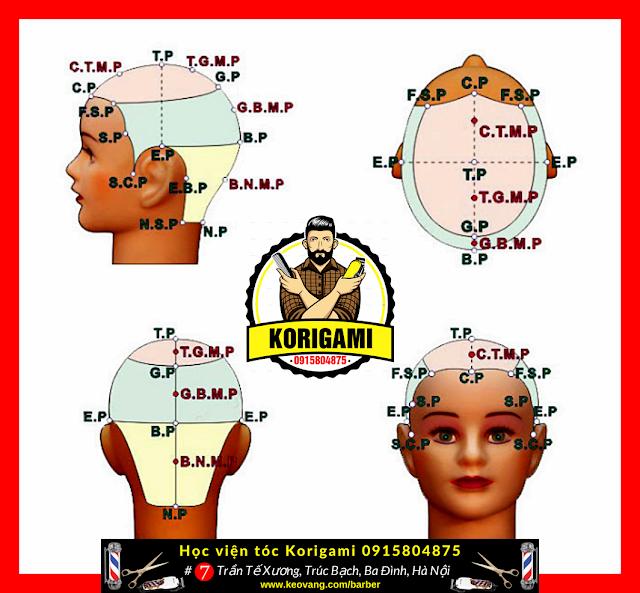[HỌC CẮT TÓC] CÁC ĐIỂM VÀ ĐƯỜNG CHIA TRÊN ĐẦU DÀNH CHO NGƯỜI MỚI HỌC NGHỀ