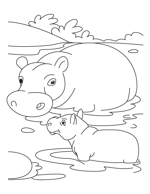 cute hippo coloring pages - pictures of animals coloring kids