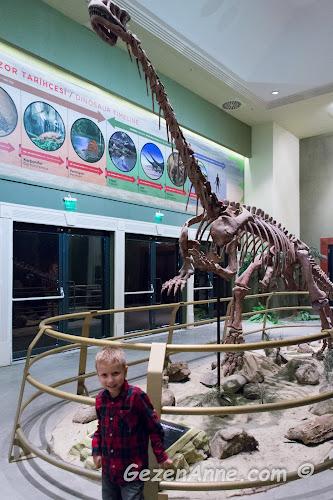 Jurassic Land'te yapay dinozor iskeletinin önünde oğlum, Forum İstanbul AVM