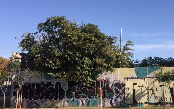 Parque Ferroviario