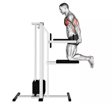 triceps machine dips