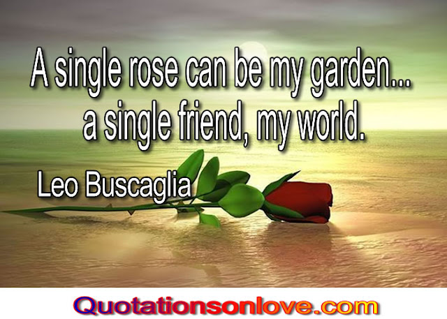 A singe rose can be my garden