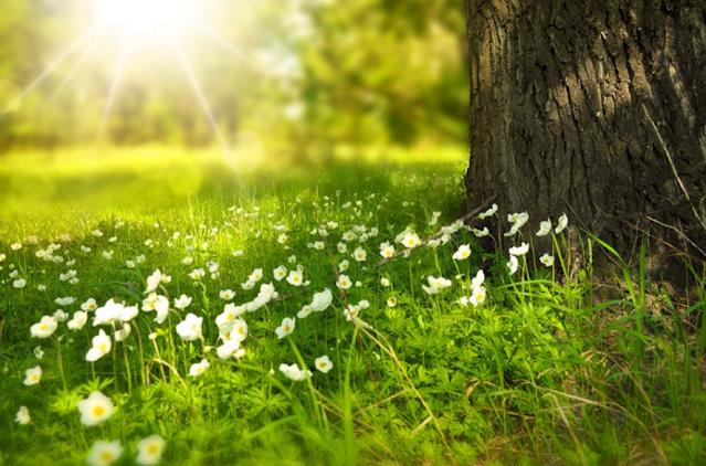 78+ Kata-kata Bijak Islami Sebagai bahan Renungan Dan Motivasi Hidup