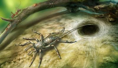 Laba-laba Kuno Berekor Ditemukan Terjebak Dalam Amber
