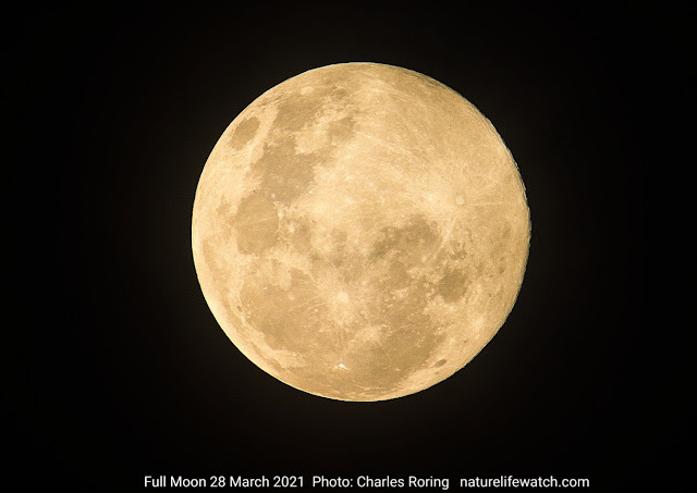 full moon photograph taken on 28 March 2021 using Canon D-SLR camera 200D and Tamron 150-600mm G2 lens