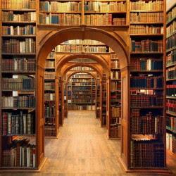 Biblioteconomia, Ciência da Informação