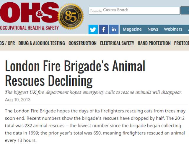 Noticia sobre el descenso de servicios de rescate animal