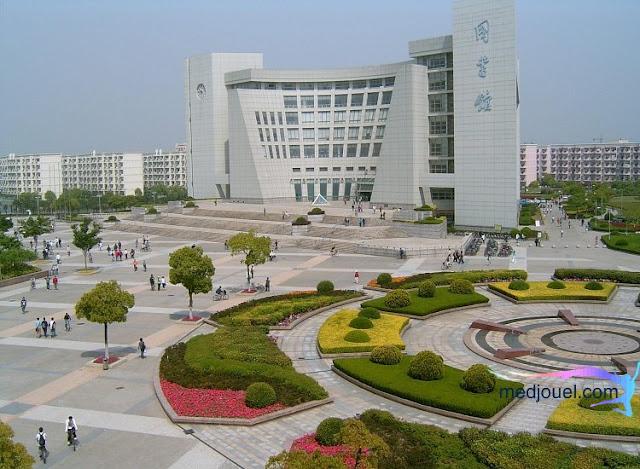 منح حكومة شنغهاي 2021
