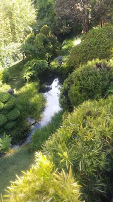 San Francisco Japanese Tea Garden - Stream