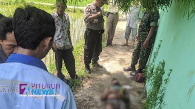 Nekat ke Sawah Dalam Kondisi Sakit, Pencari Belut Ditemukan Tergeletak Tanpa Nyawa di Sawah