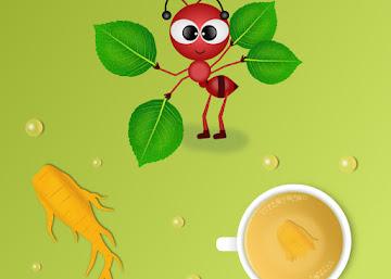 Receita Energética: Chá da Raiz de Ginseng