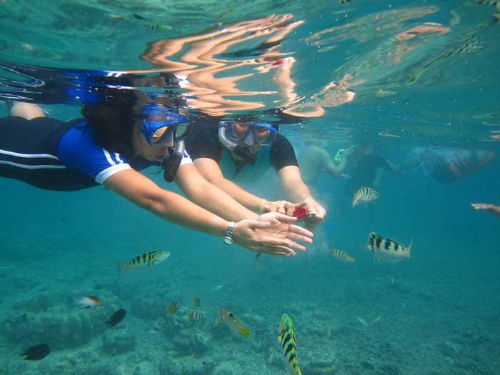 Aktivitas Wisata di Taman Laut Bunaken