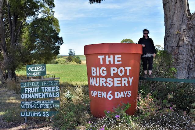 The BIG Pot Nursery in Melrose, Tasmania
