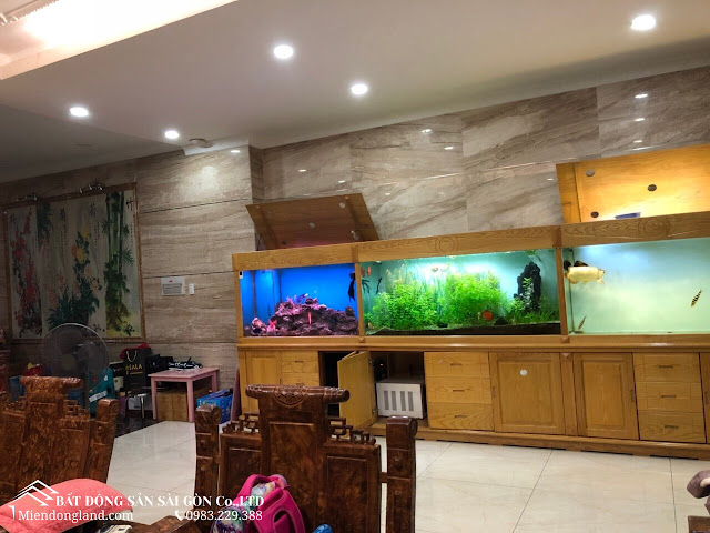 www.miendongland.com 0983229388